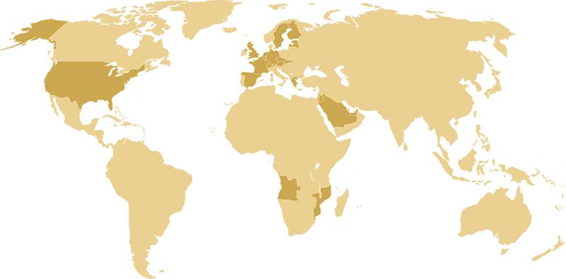 Partners Map Whole World 2019