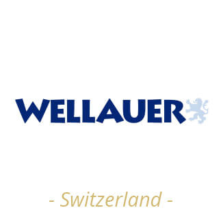 Logotipo Wellauer Switzerland